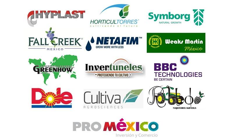 patrocinadores seminario arandanos mexico