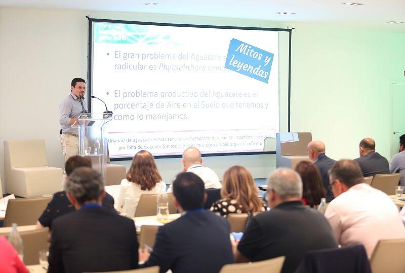 seminario tecnico internacional de palto